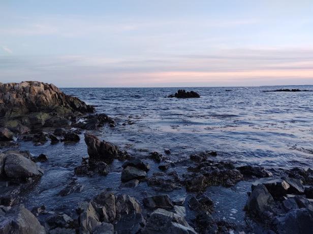 Ocean post Feb 2020